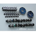 Picture for category Dbilas camshaft