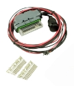 Picture for category AEM wiring