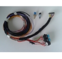 Picture of Whose wiring harness big
