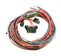 Picture of AEM EMS-4 wiring harness