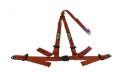 Picture of Street car harness   BLUE