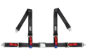 """Picture of 4-point harness in 2 """""""