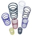 Picture of Replacement Springs - Wastegate