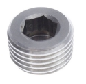 Picture of Closing screw for nut by EGT - Stainless steel SS304